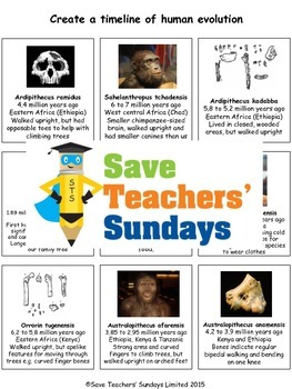 Human evolution timeline Lesson plan and Worksheet / Activity
