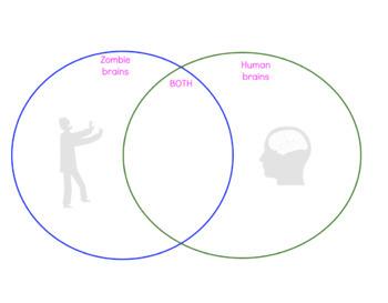 FREEBIE! Human v Zombie Brains: A Comparison Activity