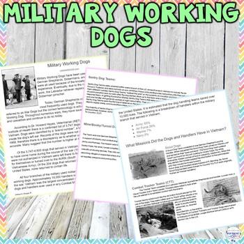 Humane Education: Military Working Dogs Worksheet