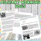 Military Working Dogs Worksheet for a Humane Education Ser