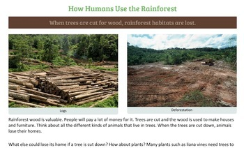 Humans Need Rainforests and Rainforests Need Us to Protect Them PDF