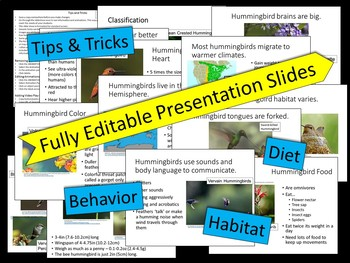 Hummingbirds - PowerPoint Presentation and Printables Bonus
