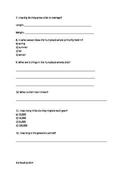 Humpback Whale - Review Article Facts 20 Review Questions Vocab Activites PDF