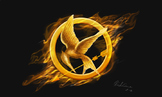 Hunger Games Competition Paper