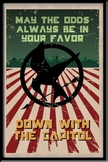 Hunger Games Printable Poster: May The Odds Be Ever In Your Favor
