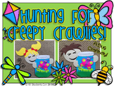Spring Activities - Insects