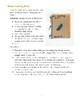 Hunting Unit Study Teacher Manual