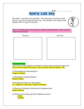 Hydra Lab with Daphnia - Phylum Cnidaria