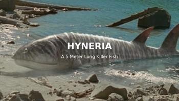 Hyneria
