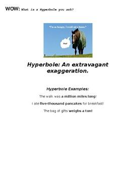 Hyperbole Interactive Notebook Page