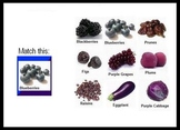 Hyperstudio Stacks:  Nutrition Pack