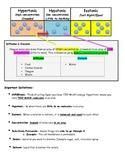 Hypertonic, Hypotonic, Isotonic Study Guide