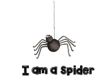 I Am A Spider Songbook