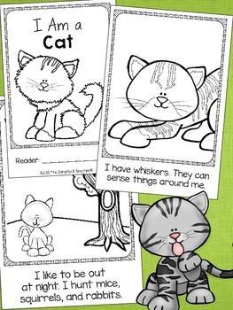 I Am a Cat Emergent Readers