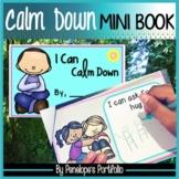 Calm Down Printables:  Calm Down Mini Book