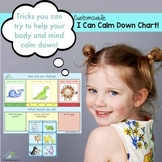 I Can Calm Down! kit - Calm Down Strategies, Emotion Cards, Posters & Chart