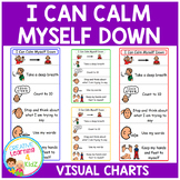 I Can Calm Myself Down Charts Autism