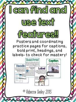I Can Find and Use Text Features!