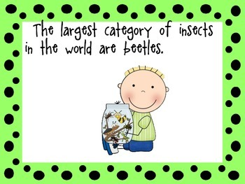 I Can Learn About Insects
