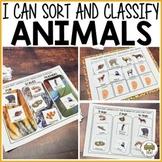 Preschool Sort and Classify Animals Activities
