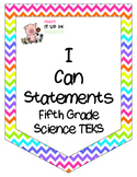 Neon Chevron I Can Statements Fifth Grade Science TEKS