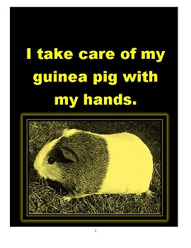 """Low Vision Book: """"I Can Take Care of My Guinea Pig with My Hands"""""""