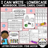 I Can Write - Lowercase Letters Workbook, Signs, Cards, Ch