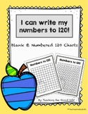 I Can Write My Numbers to 120