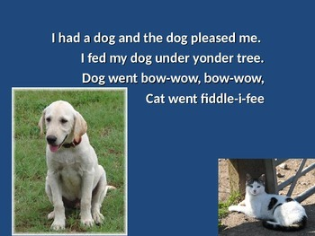 Music Song: I Had a Cat