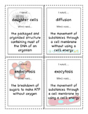 I Have/Who Has Cell Processes vocabulary game