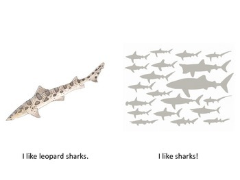 I Like Sharks Emergent Reader/Beginner reader/Decodable reader