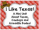 I Like Texas-A Mini Unit