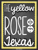 I Love TEXAS! 12 Posters to show off your LONE STAR love!