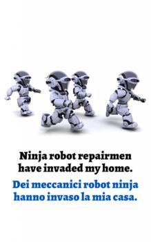 I Miei Meccanici Sono Dei Robot Ninja