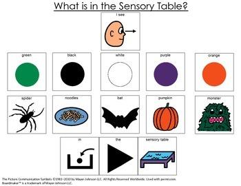 I See Bats, Pumpkins, Noodles- OH MY! {Sensory Table Visual Support; autism}