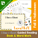 Halloween Guided Reading Book & Word Work Level B, I See a Ghost