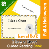Halloween Guided Reading Book Level B, I See a Ghost