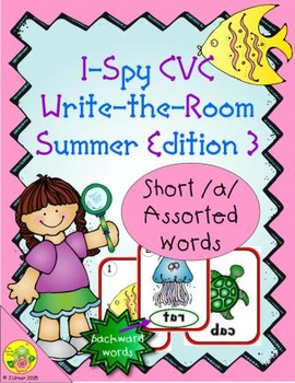 I-Spy CVC Mirror Words - Short /a/ Assorted Words (Summer Edition) Set 3