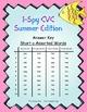 I-Spy CVC Mirror Words - Short /a/ Assorted Words (Summer Edition) Set 4