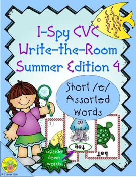 I-Spy CVC Mirror Words - Short /e/ Assorted Words (Summer Edition) Set 4