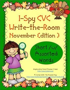 I-Spy CVC Mirror Words - Short /u/ Assorted Words (Nov. Ed