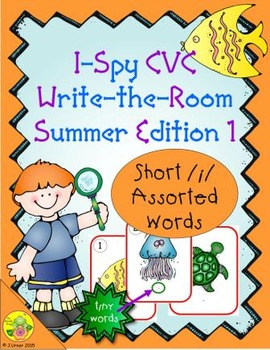 I-Spy CVC Tiny Words - Short /i/ Assorted Words (Summer Edition) Set 1