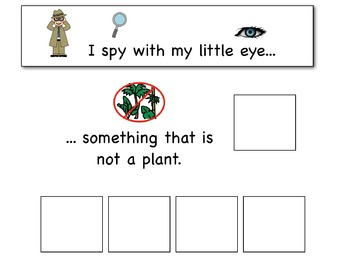 I Spy: Non-Examples Adapted Book for Preschool and Kindergarten