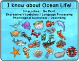 I Spy Ocean - Mixed Groups (Language Processing & Phonolog