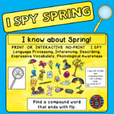 I Spy Spring - Mixed Groups (Language Processing & Phonolo