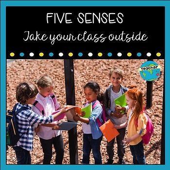 Five Senses Graphing