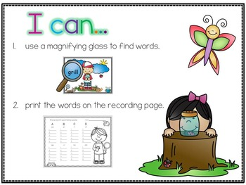 I Spy Word Families (Insect Theme)