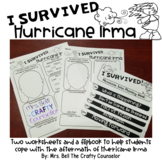I Survived Hurricane Irma (coping with a hurricane)