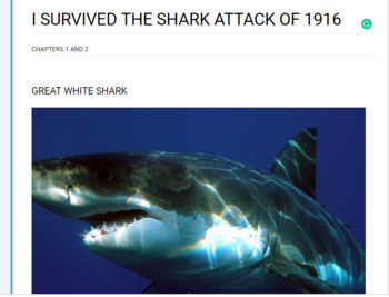 I Survived The Shark Attacks of 1916, chapters 1 & 2 novel study companion
