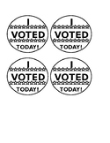 I Voted Today Craft